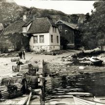 kjvik0134
